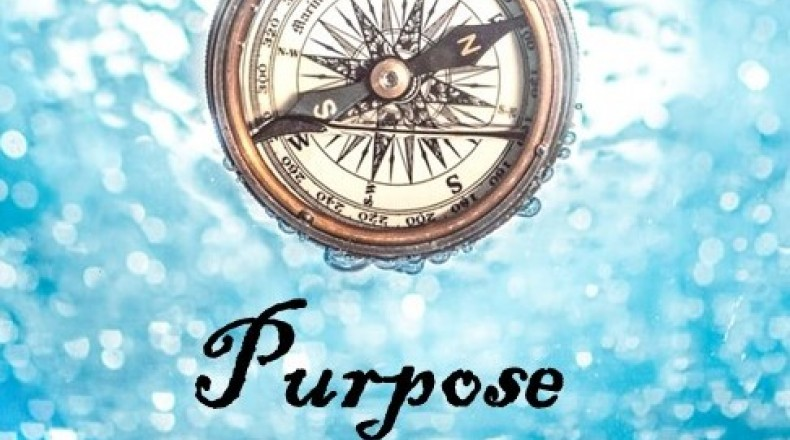 compass over water with purpose written below it