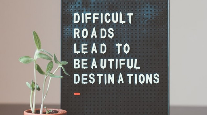 plant next to sign that reads difficult roads lead to beautiful destinations