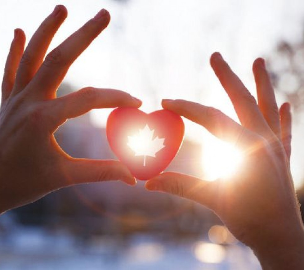 An Image of a heart being held in a hand with the sun shining in