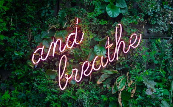 words and breathe in neon against foliage